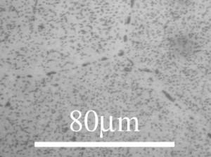 Al2Cu precipitates in an aluminum matrix. © DoITPoMS Micrograph Library, Univ. of Cambridge