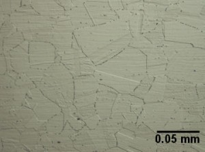 Stainless Figure1 Austenite grains in a 304 alloy. The particles on the grain boundaries are chromium carbides.